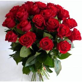 Красные розы (27 цветков)