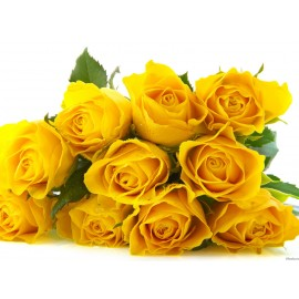 11 Trandafiri galbeni