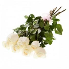 7 Trandafiri albi