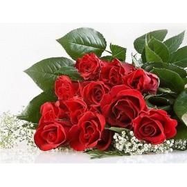 11 Trandafiri rosii