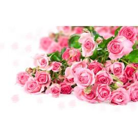 31 Trandafiri roz