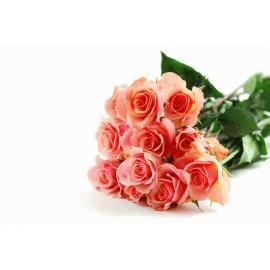 15 Trandafiri roz