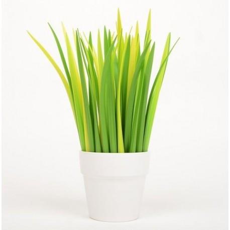 Pix - iarba