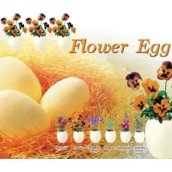 Flower Egg