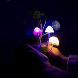 """Lampa """"Avatar"""" pe piatra"""